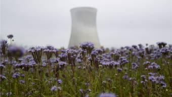 Das Atomkraftwerk Leibstadt produzierte 2016 aufgrund der längeren Stilllegung 2524 Gigawattstunden weniger als im Vorjahr. Keystone