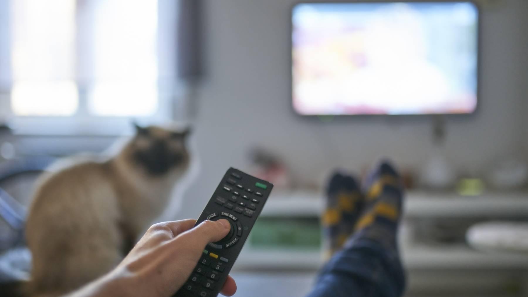 tv schauen