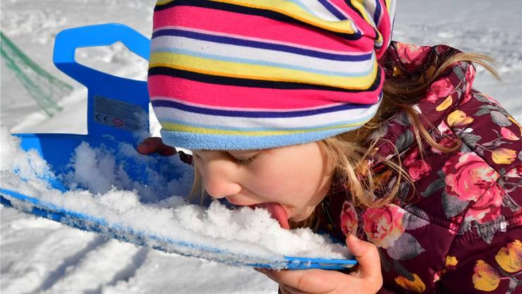 Schnee essen kann man auch im Niederamt – wenn es denn welchen hat.