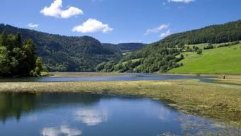 Die Idylle trügt: Im französisch-schweizerische Grenzfluss Doubs ist das Überleben der vom Aussterben bedrohten Fischart Apron nicht gesichert (Archivbild).