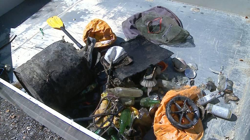 Clean-up-Day: Rund 30 Taucher haben im Hallwilersee nach Abfall getaucht