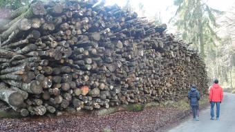 242 Kubikmeter umfasst dieses Lager für Brennholz der Bürgergemeinde Grenchen.