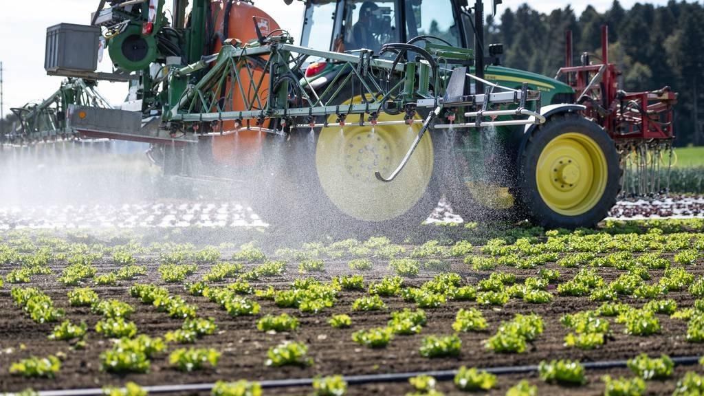 Umfrage zeigt: Agrar-Initiativen liegen leicht vorne