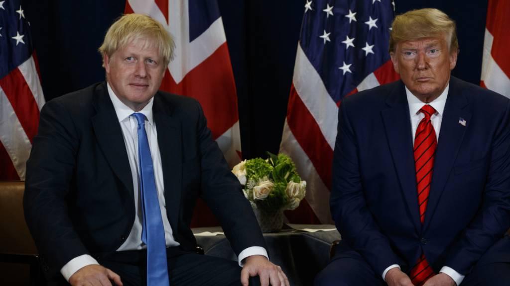London weist Trumps Kritik an Johnsons Brexit-Abkommen zurück