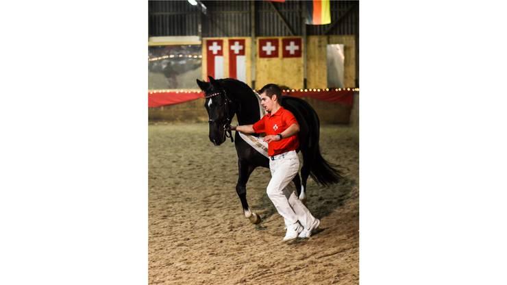 Das ist es also, das schönste Pferd des Landes – hier geführt von Denis Häfliger, einem Nachwuchstalent im Reitsport.