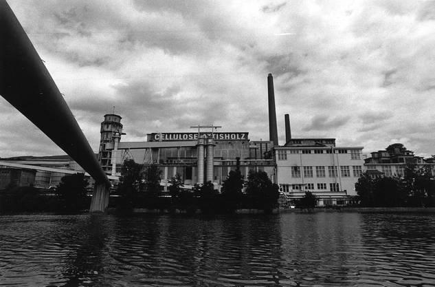 Gegründet wurde die Cellulosefabrik Attisholz 1881