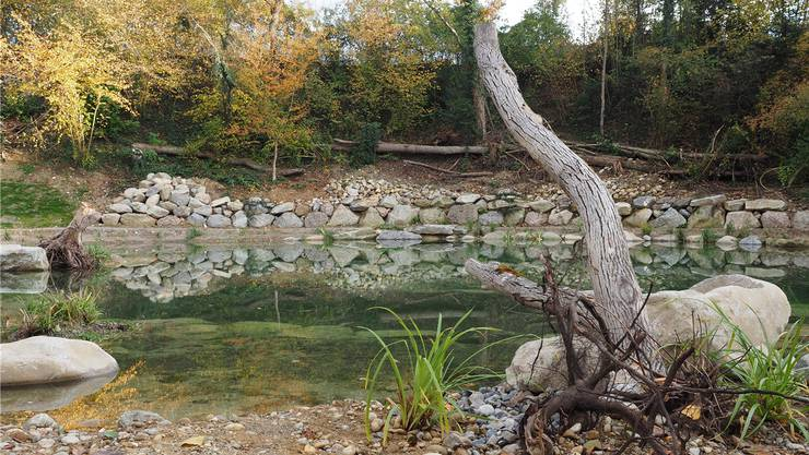 Auf einer Länge von 200 Metern wurde der Dorfbach renaturiert.