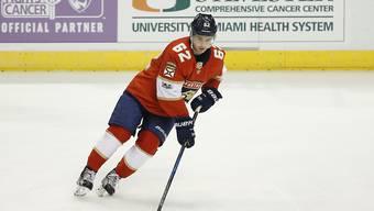 Floridas Denis Malgin soll in der AHL Matchpraxis sammeln