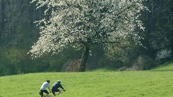 Der sehr warme April sorgte für einen Frühling im Zeitraffer.