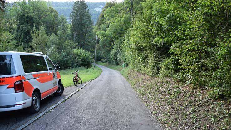 Auf dieser Strasse wurde der unangeleinte Hund von einer Frau überfahren.