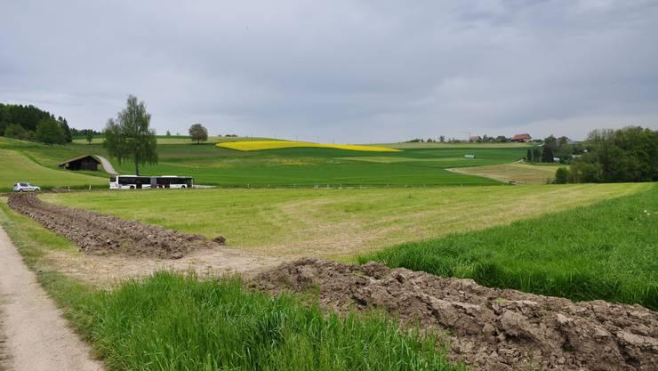 Auf diesem Feld an der Lielistrasse in Birmensdorf haben sich Fahrende im vergangenen Mai niedergelassen.