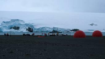 Metallica spielte Konzert auf Antarktis