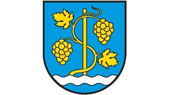 Die Schinznacher haben diesem neuen Wappen zugestimmt.