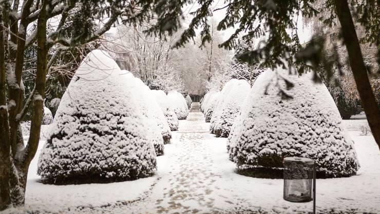 Der Schnee in Baden verwandelt den alten Stadtfriedhof in eine Märchenlandschaft.