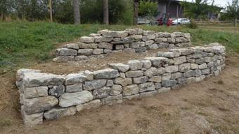 Die neue Trockenmauer bietet viel Lebensraum für Fauna und Flora.