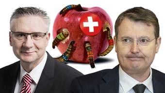 Ein Schweizer Apfel wird von Ungeziefer in Parteifarben zerstört. Die Kampagne spaltet die SVP – auch im Aargau, wie die Aussagen von Glarner (links) und Burgherr zeigen.