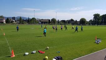 Die 13-köpfige Trainingsgruppe des FC Aarau: Auffällig ist, dass praktisch alle Spieler Schienbeinschoner tragen.