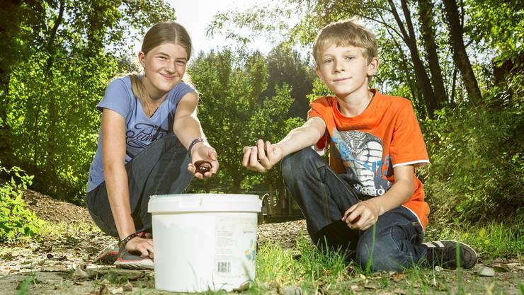 Janine und Sascha haben langjährige Erfahrung als Eicheln- und Kastaniensammler. Ihr Tipp: Zum Sammeln auf einen windigen Tag warten.