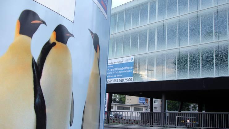Adresse für ausländische Firmen?: Das «Schneeflockenhaus» wird neu von Basel aus vermarktet.