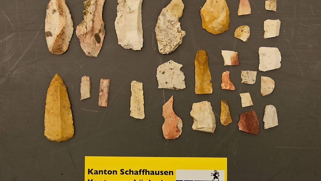 Feuerstein-Objekte aus der Altsteinzeit: Der Wintersturm «Burglind» hat zur Entdeckung der Funde in einem Schaffhauser Wald beigetragen.