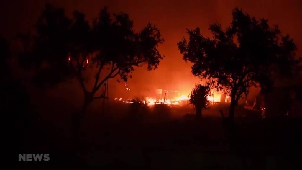 Griechenland: Grösstes Flüchtlingslager Europas ist zerstört