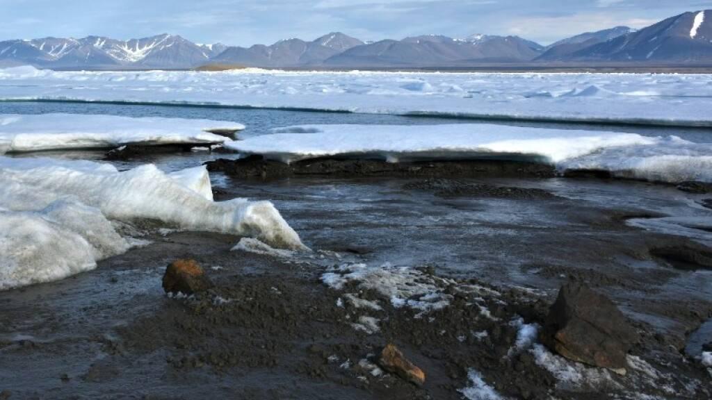 Die noch namenlose Insel an die Nordküste Grönlands besteht hauptsächlich aus Schlick und Kies.
