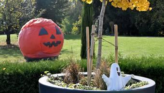 Dieser riesige Halloween-Kürbis steht an der Schachenstrasse 46 in Obergösgen.