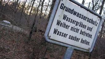 Aus dem Hardwald stammt ein grosser Teil des Trinkwassers der Region.