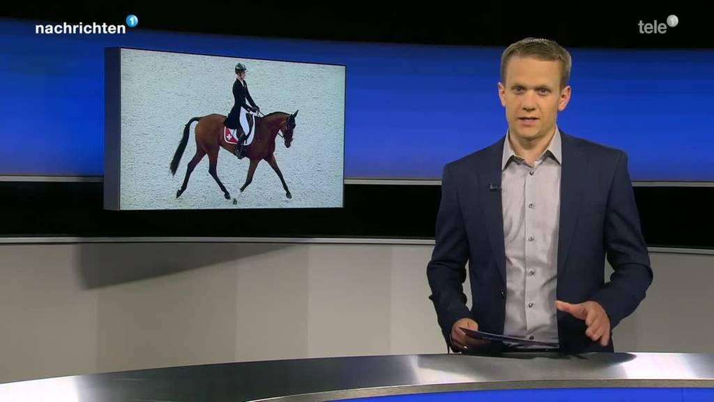 Schweizer Vielseitigskeitspferd muss eingeschläfert werden