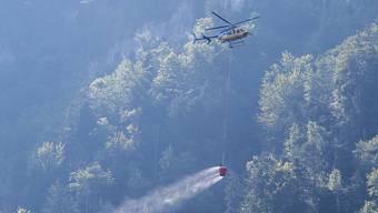 Kleinflugzeug stürz in Hergiswil ab und löst Waldbrand aus