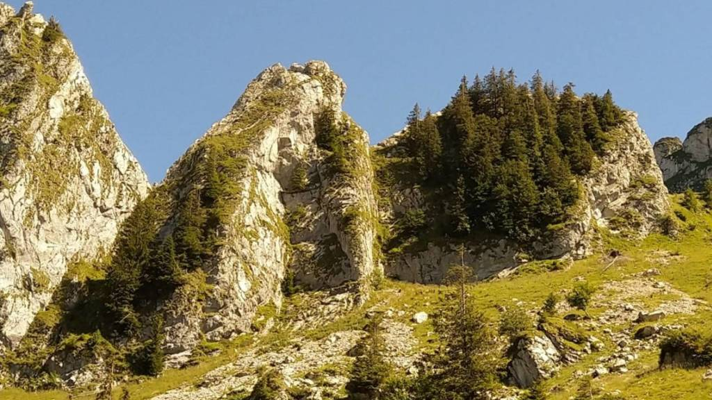 Teenager und 47-Jähriger stürzen am Col de Jaman in den Tod