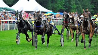 Der Start ist in der Meisterschaft wichtig: Beide Turrettini-Pferde, Attenarco (ganz links) und Vlattimaro (ganz rechts), sind gut weggekommen, in der Mitte Top Boy. uw