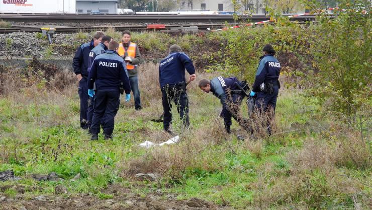 Beamte der Stadtpolizei, der Kantonspolizei und der Spurensicherung bergen die Schweinekadaver auf dem Moscheeland in Grenchen