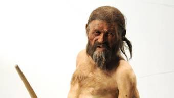 In einem Massengrab aus der Steinzeit fanden Forscher Menschen mit zertrümmerten Gliedmassen und Pfeilwunden. Auch der im Eis verstorbene Ötzi (im Bild eine Nachbildung) hatte eine Pfeilwunde.