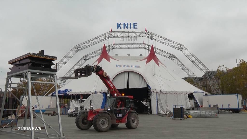 Circus Knie: Das ist dieses Mal alles anders