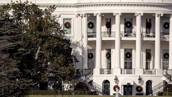 Ein Magnolien-Baum droht auf das Weisse Haus in Washington zu stürzen, daher soll der extrem alte Baum nunmehr gefällt werden.