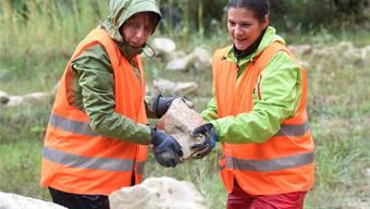 Mitarbeiterinnen des Finanzdienstleisters SIX arbeiten im Steinbruch Mellikon. Alexander Wagner