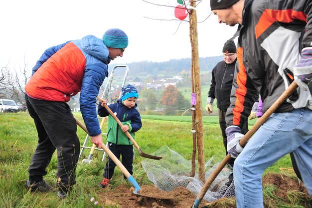 Der dreijährige Laurin hilft seinem Papa, das Loch wieder zuzubuddeln.