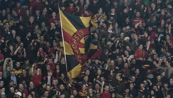 Berner Fans können sich über einen Neuzugang freuen