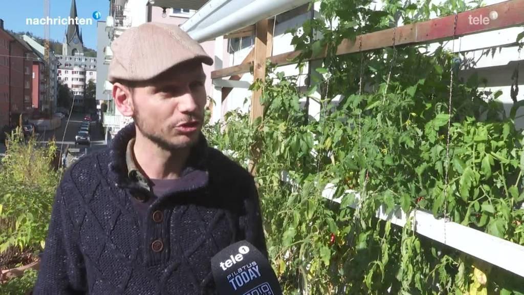 Pflanzenfestival in Luzern zum Trend Urban Gardening