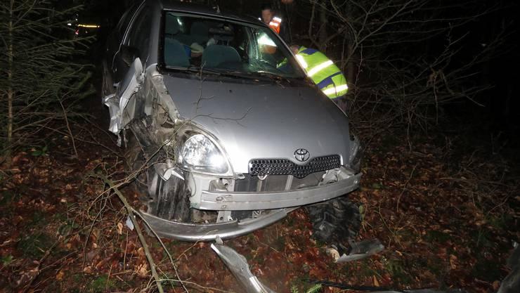 Weil ein Fuchs die Strasse kreuzte, setzte der 19-jährige Autolenker zur Vollbremsung an.