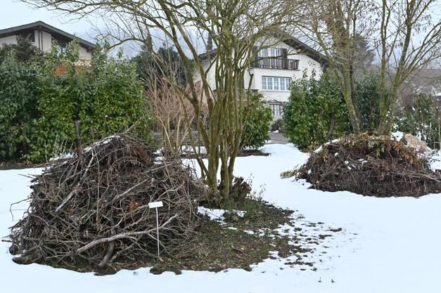 Den Winter hindurch bleiben Holzhaufen für die Tiere liegen