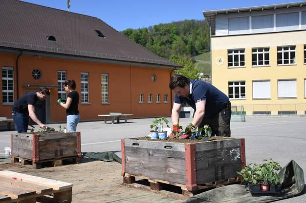 Pflanztag GartenJeden Projekt in Ennetbaden am Samstag 29.4. 2017