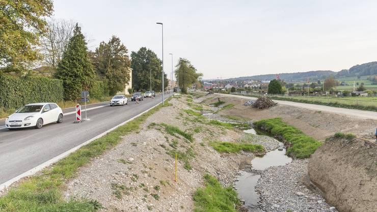 Der Schäflibach wurde renaturiert und verläuft nun an der Birmensdorferstrasse wellenförmig und nicht mehr geradlinig.