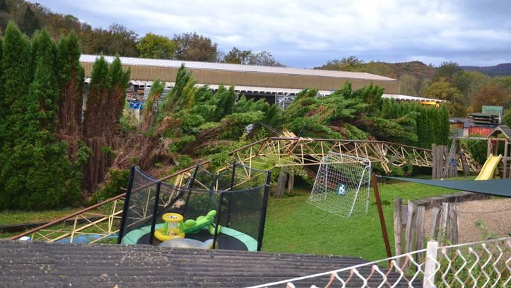 Der 20-Meter-Kran stürzte in einen Garten.