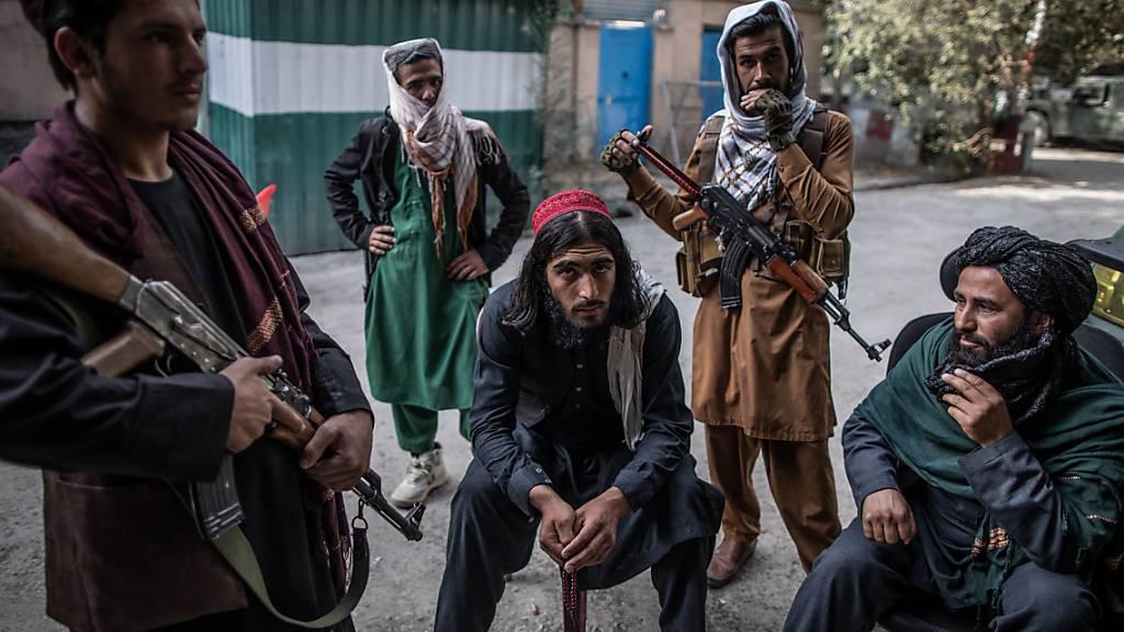 Taliban stellen Leichen von angeblichen Entführern öffentlich aus