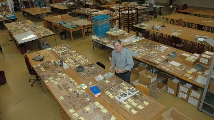 Tische voller Scherben in der Lagerhalle der Zürcher Kantonsarchäologie. Fotos: Matthias Scharrer