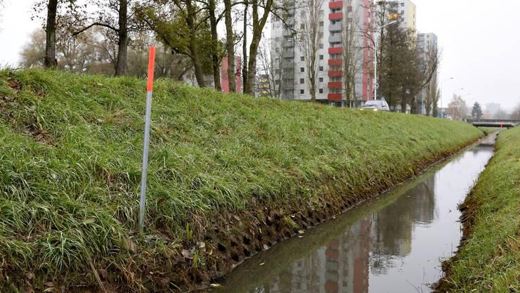 Was sickert aus dem Stadtmist in den Brühlgraben? Die Messstelle links gibt Aufschluss.