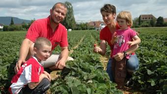 Familie Zubler ist während der Saison jeden Tag auf dem Erdbeerfeld: Stefan und Madlen Zubler mit ihren Kindern Pius und Eva.