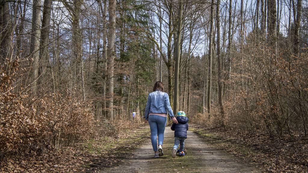 Grosser Rat zofft sich um Waldinitiative